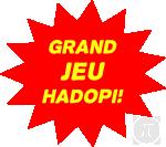 Grand Jeu HADOPI image
